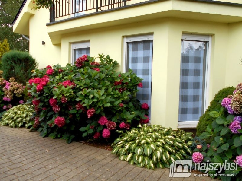 Dom na sprzedaż Pobierowo, Centrum  400m2 Foto 5