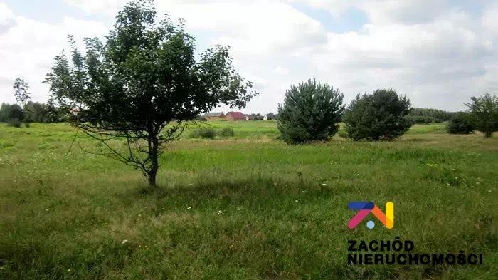 Działka rolna na sprzedaż Wygon  18600m2 Foto 1