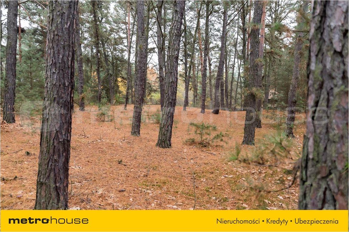 Działka leśna na sprzedaż Wrzosów, Jedlnia-Letnisko  1035m2 Foto 5
