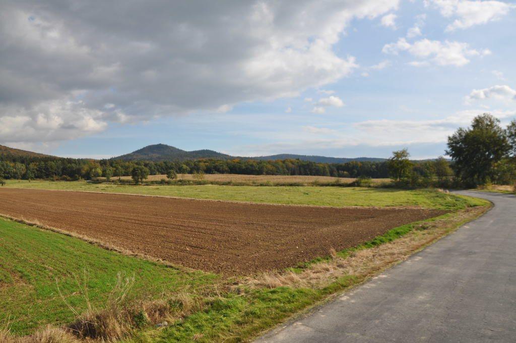 Działka rolna na sprzedaż Mysłaków  29500m2 Foto 11