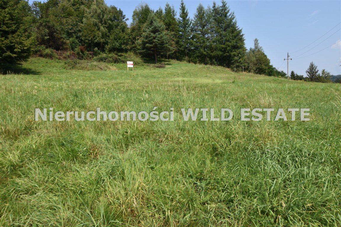 Działka rolna na sprzedaż Solina, Bóbrka  4389m2 Foto 3