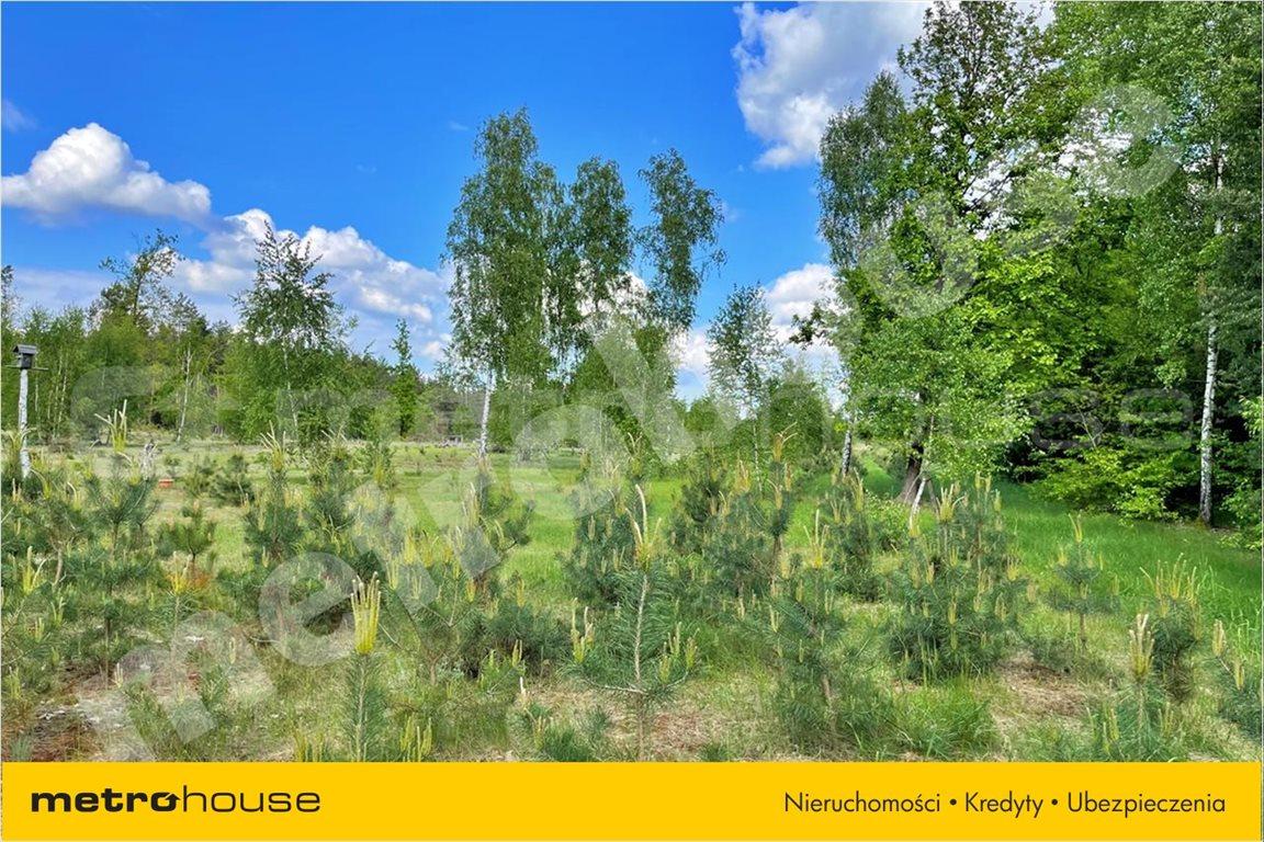 Działka leśna na sprzedaż Chełsty, Różan  80000m2 Foto 3