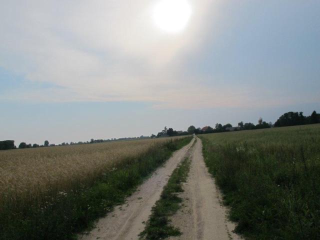Działka inna na sprzedaż Nowe Wrońska  3800m2 Foto 3