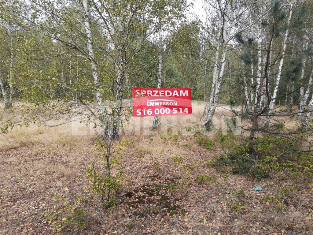 Działka budowlana na sprzedaż Mszczonów, Stare Budy Radziejowskie  10070m2 Foto 7