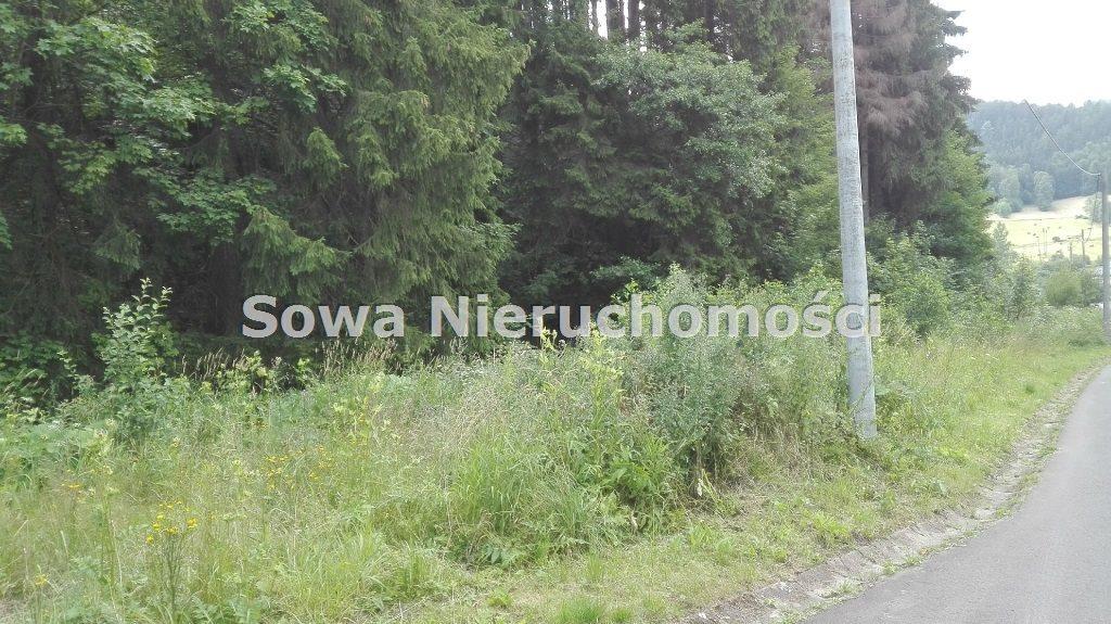 Działka inna na sprzedaż Mieroszów, okolice Mieroszowa  3900m2 Foto 6