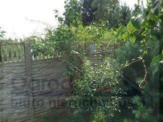 Działka budowlana na sprzedaż Dziekanów Leśny  1600m2 Foto 1