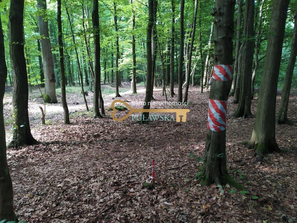 Działka budowlana na sprzedaż Waleriany, Działka w otulinie lasu  3168m2 Foto 1