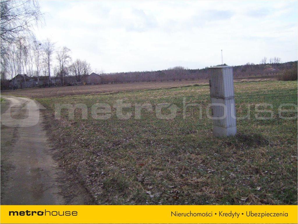 Działka rolna na sprzedaż Chudolipie, Mszczonów  10500m2 Foto 4
