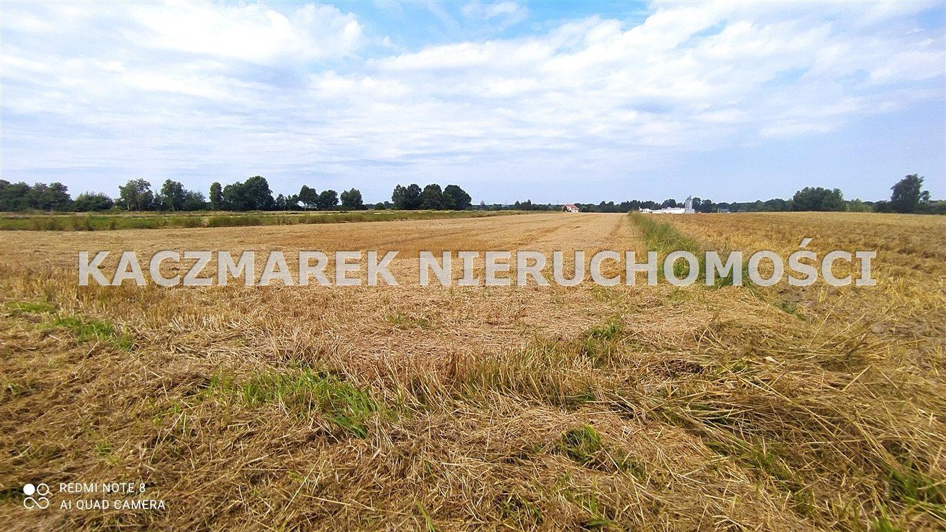 Działka rolna pod dzierżawę Ćwiklice  22060m2 Foto 1