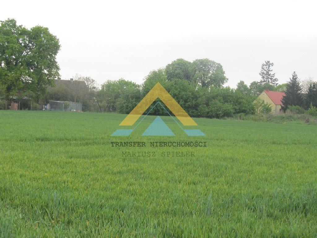Działka siedliskowa na sprzedaż Choszczno  3090m2 Foto 3
