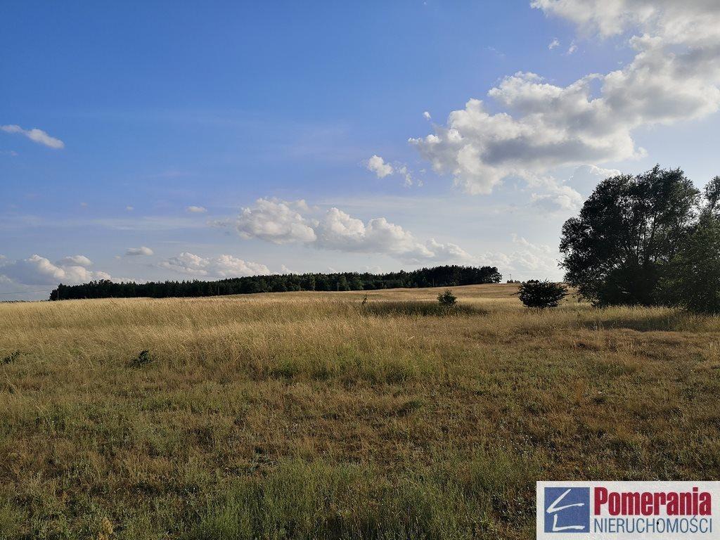 Działka rolna na sprzedaż Wąwelnica  37300m2 Foto 5