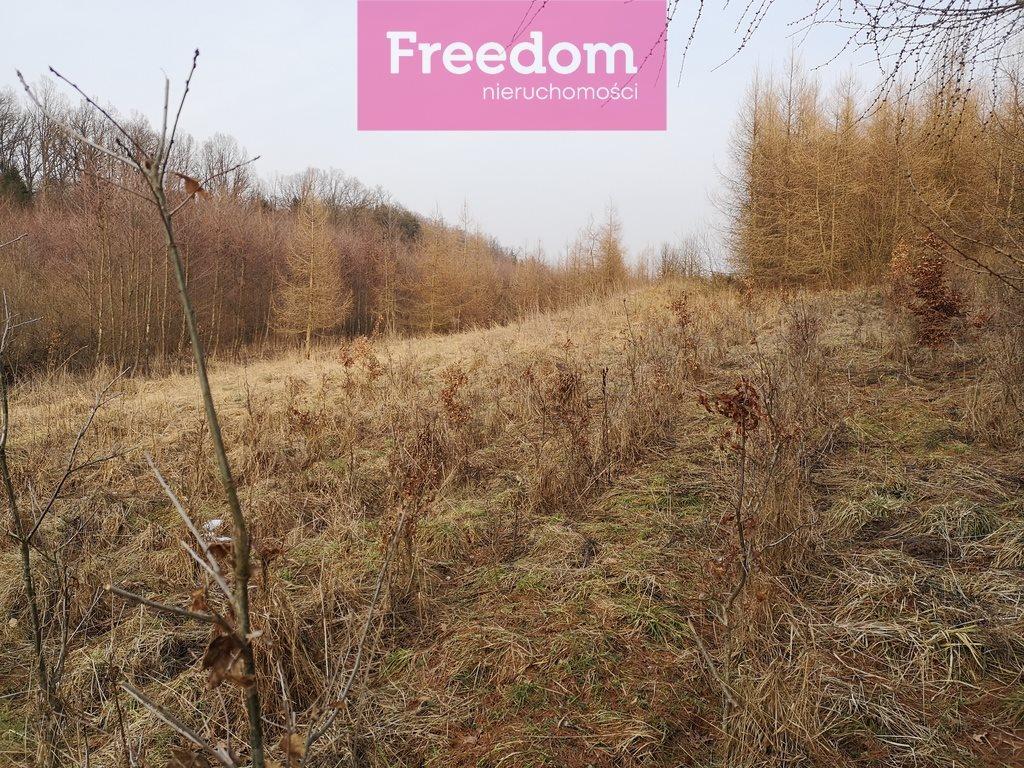 Działka leśna na sprzedaż Sobno  142300m2 Foto 10