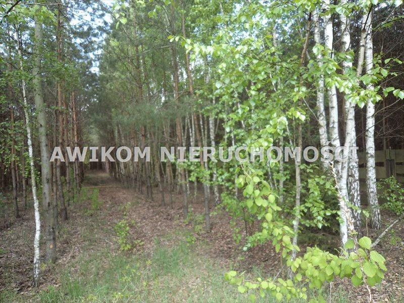 Dom na sprzedaż Żyrardów, Puszcza Mariańska  100m2 Foto 9