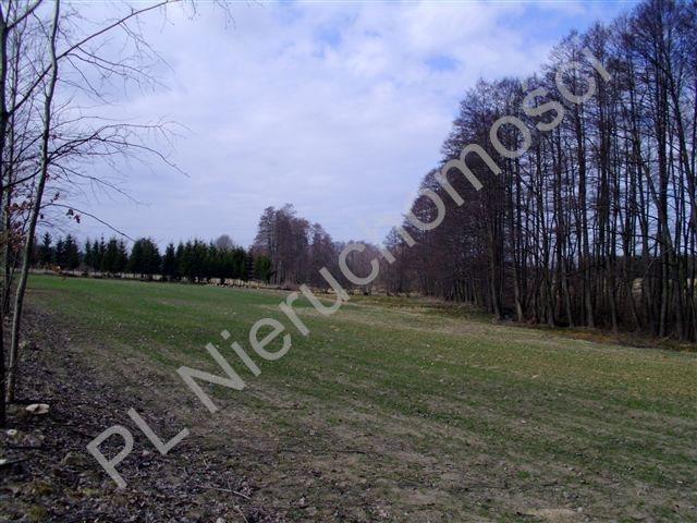 Działka rolna na sprzedaż Mszczonów  15000m2 Foto 1