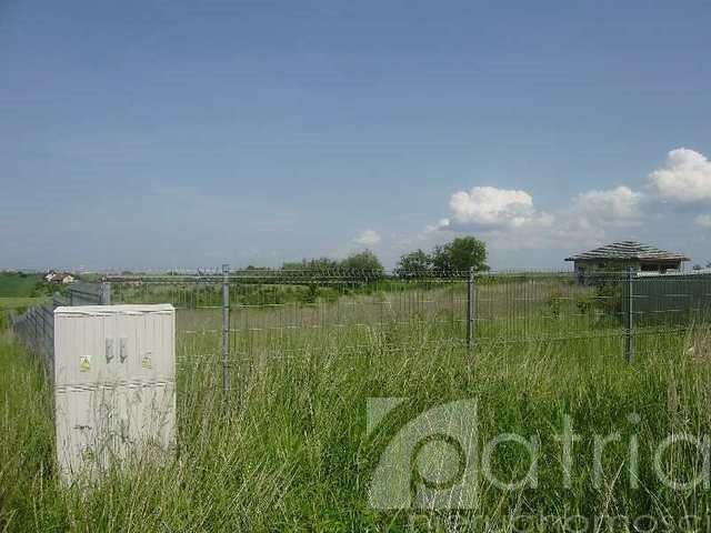 Działka rolna na sprzedaż Siadło Dolne  15000m2 Foto 4