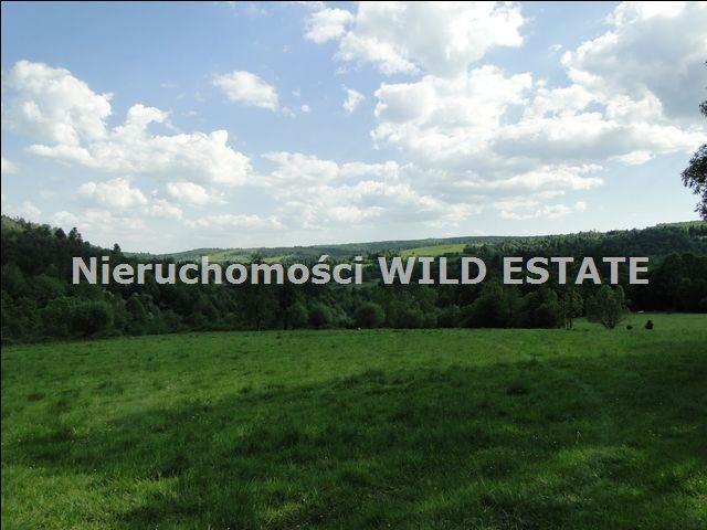 Działka rolna na sprzedaż Ustrzyki Dolne, Jureczkowa  22700m2 Foto 2