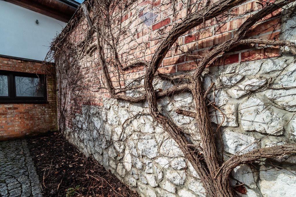 Dom na sprzedaż Rząska, Jodłowa  535m2 Foto 4