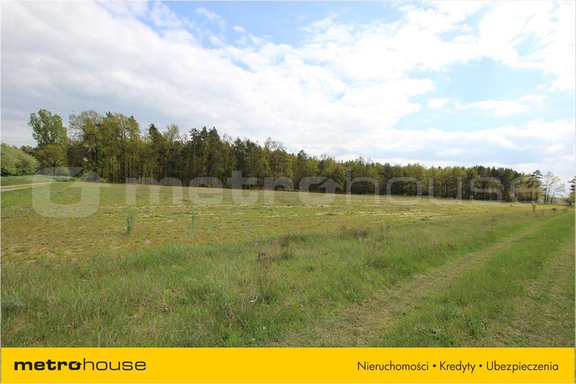 Działka rolna na sprzedaż Feliksów, Poddębice  2775m2 Foto 3