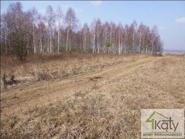 Działka rolna na sprzedaż Czarny Kierz, Czarny Kierz, Czarny Kierz  16500m2 Foto 2