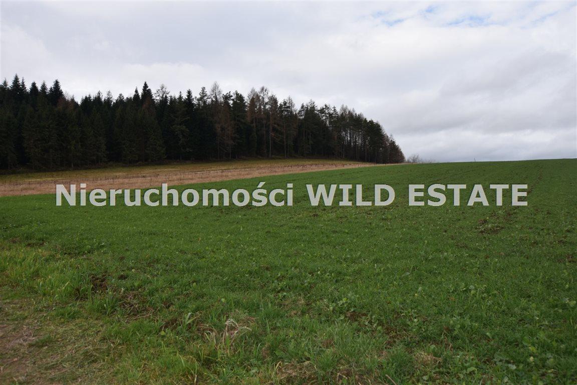 Działka rolna na sprzedaż Solina, Berezka  9520m2 Foto 4