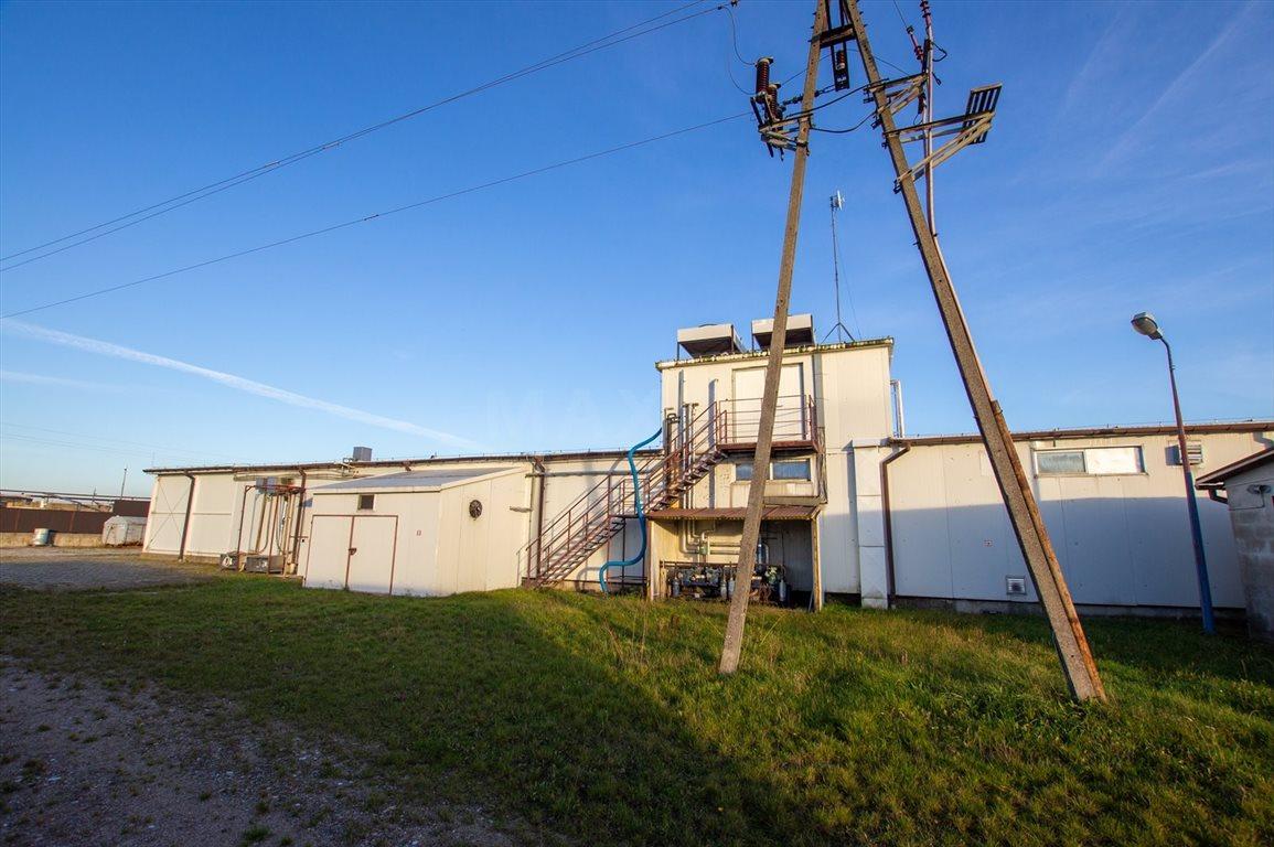 Lokal użytkowy na sprzedaż Bielsk  7100m2 Foto 7