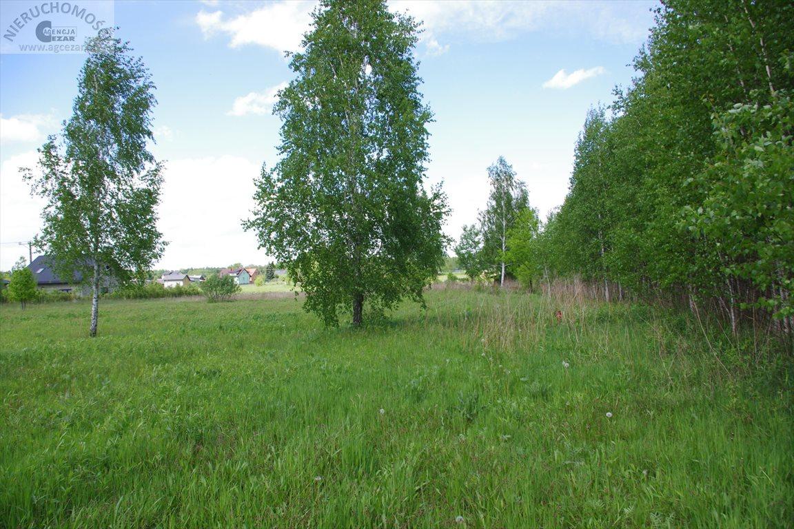Działka budowlana na sprzedaż Cyganka  1015m2 Foto 2
