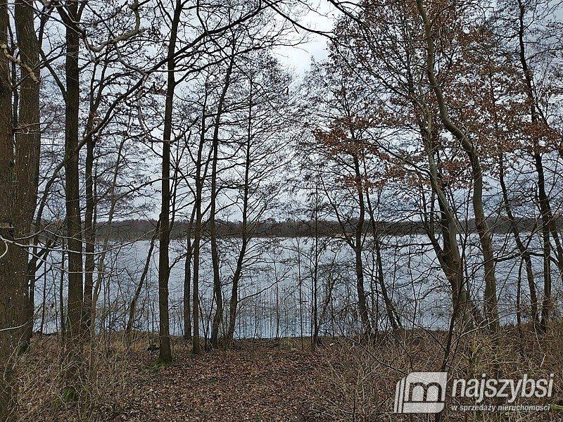 Działka rolna na sprzedaż Nętno, Wieś  2000m2 Foto 3