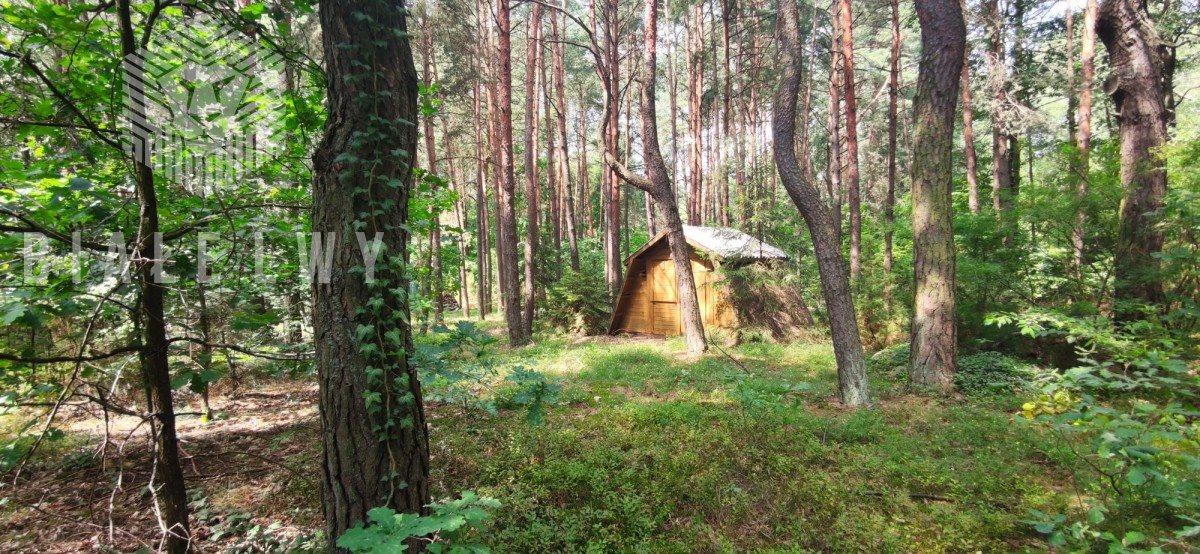 Działka leśna na sprzedaż Radachówka  1200m2 Foto 5