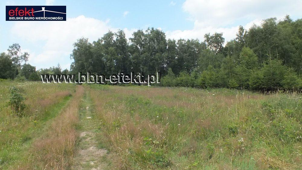 Działka budowlana na sprzedaż Buczkowice  3900m2 Foto 7