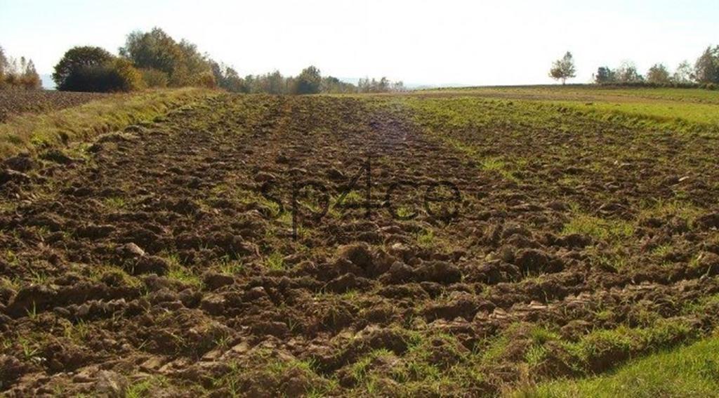 Działka rolna na sprzedaż Szczytno  1600000m2 Foto 5