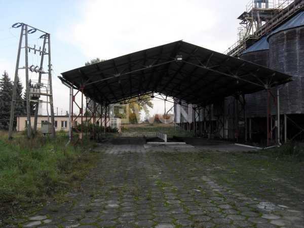 Lokal użytkowy na sprzedaż Rudna, Krochmalna  9478m2 Foto 8