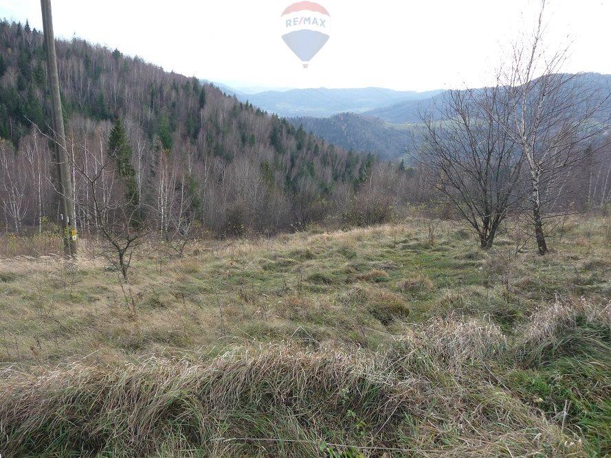 Działka rolna na sprzedaż Ochotnica Dolna  3772m2 Foto 5