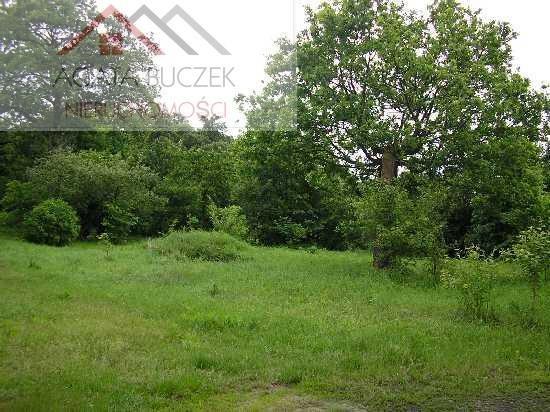 Działka komercyjna na sprzedaż Wrocław, Psie Pole  4622m2 Foto 2