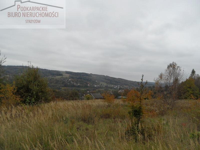 Działka budowlana na sprzedaż Glinik Zaborowski  5580m2 Foto 1