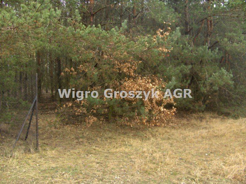 Działka leśna na sprzedaż Stanisławów  3076m2 Foto 6