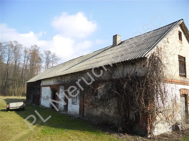 Działka siedliskowa na sprzedaż Olesin  9313m2 Foto 4