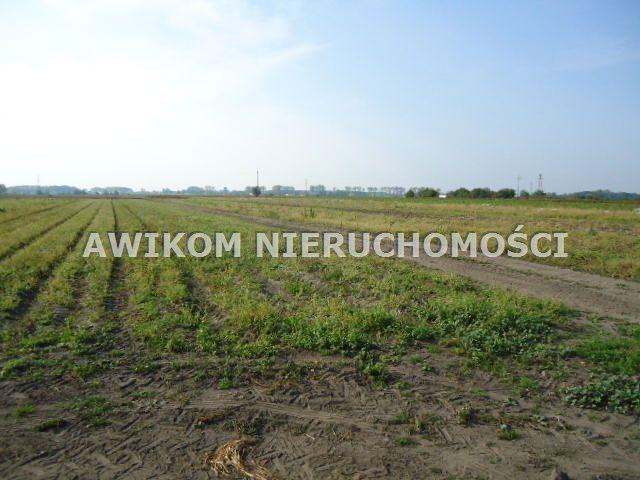 Działka budowlana na sprzedaż Grodzisk Mazowiecki, Chlebnia  100000m2 Foto 1