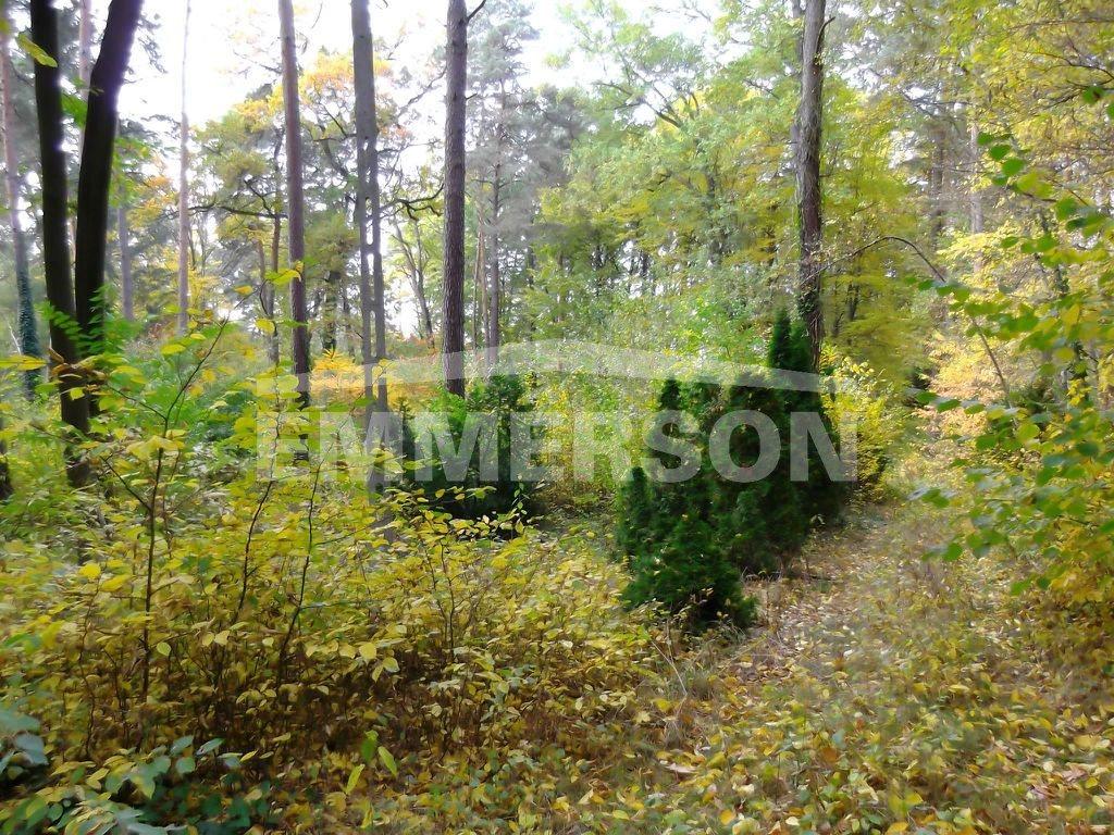 Działka leśna na sprzedaż Piaseczno, Zalesie Dolne  2511m2 Foto 3