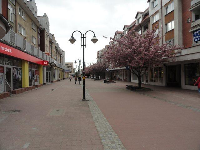 Lokal użytkowy na wynajem Elbląg, Centrum, centrum, Hetmańska  94m2 Foto 2