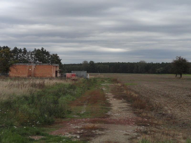 Działka budowlana na sprzedaż Niechłód  1014m2 Foto 6