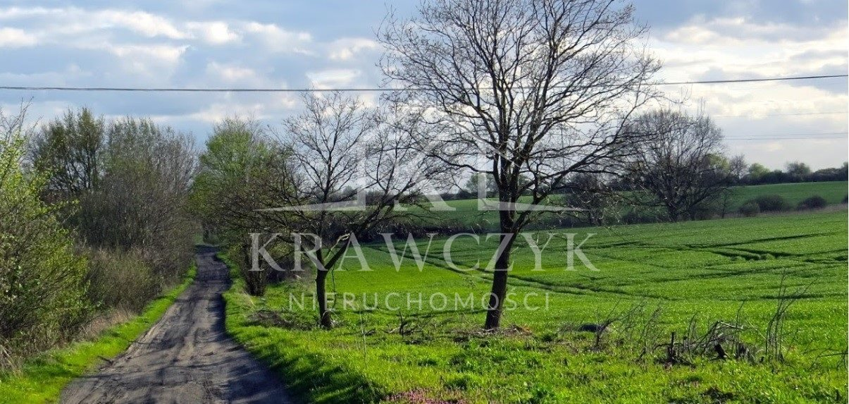 Działka rolna na sprzedaż Dobra  6399m2 Foto 2