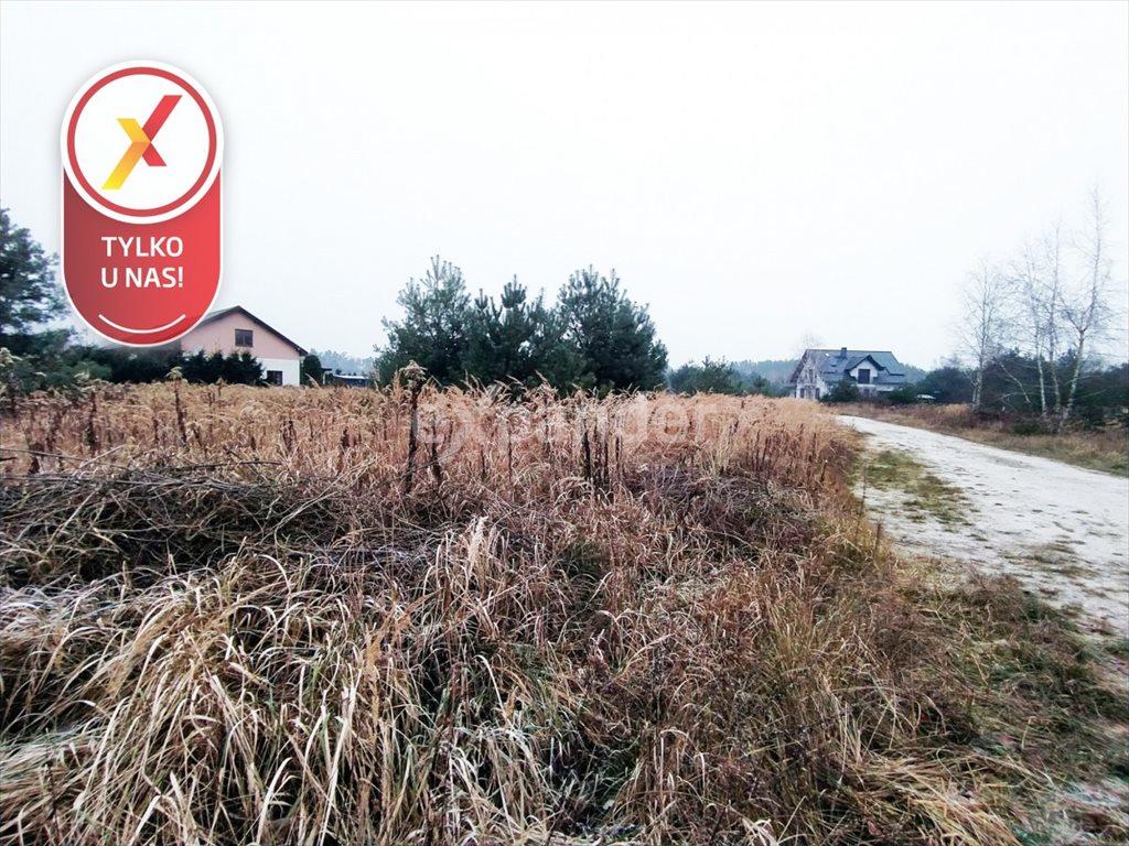 Działka budowlana na sprzedaż Miłoszyce, Bukowa  3041m2 Foto 6