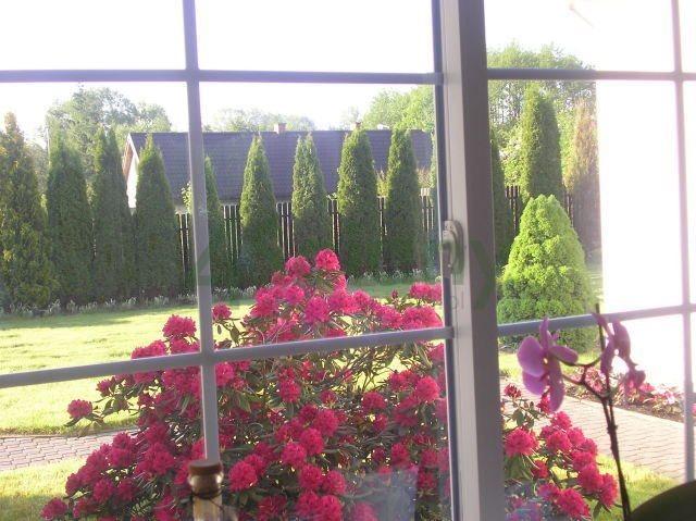 Dom na sprzedaż Żabieniec  350m2 Foto 6