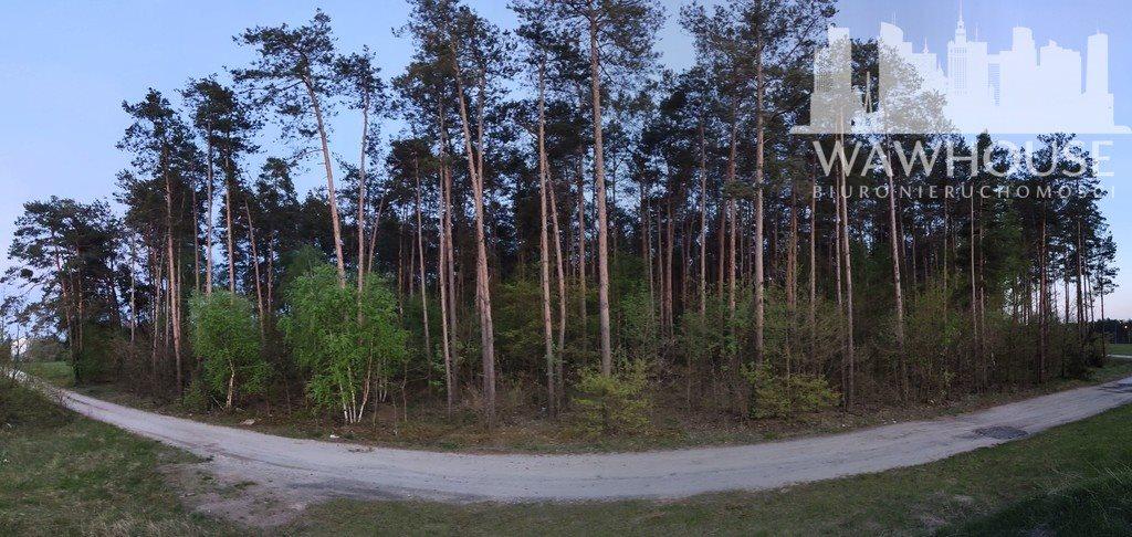 Działka leśna na sprzedaż Wodzinek  24100m2 Foto 1