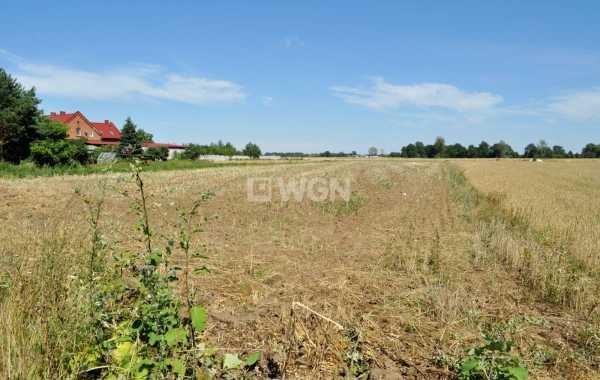 Działka rolna na sprzedaż Piersna, Piersna  4400m2 Foto 2