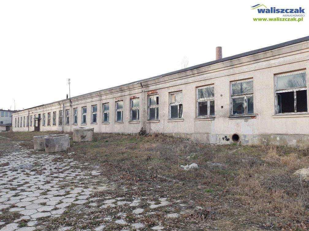 Magazyn na sprzedaż Moszczenica  800m2 Foto 5