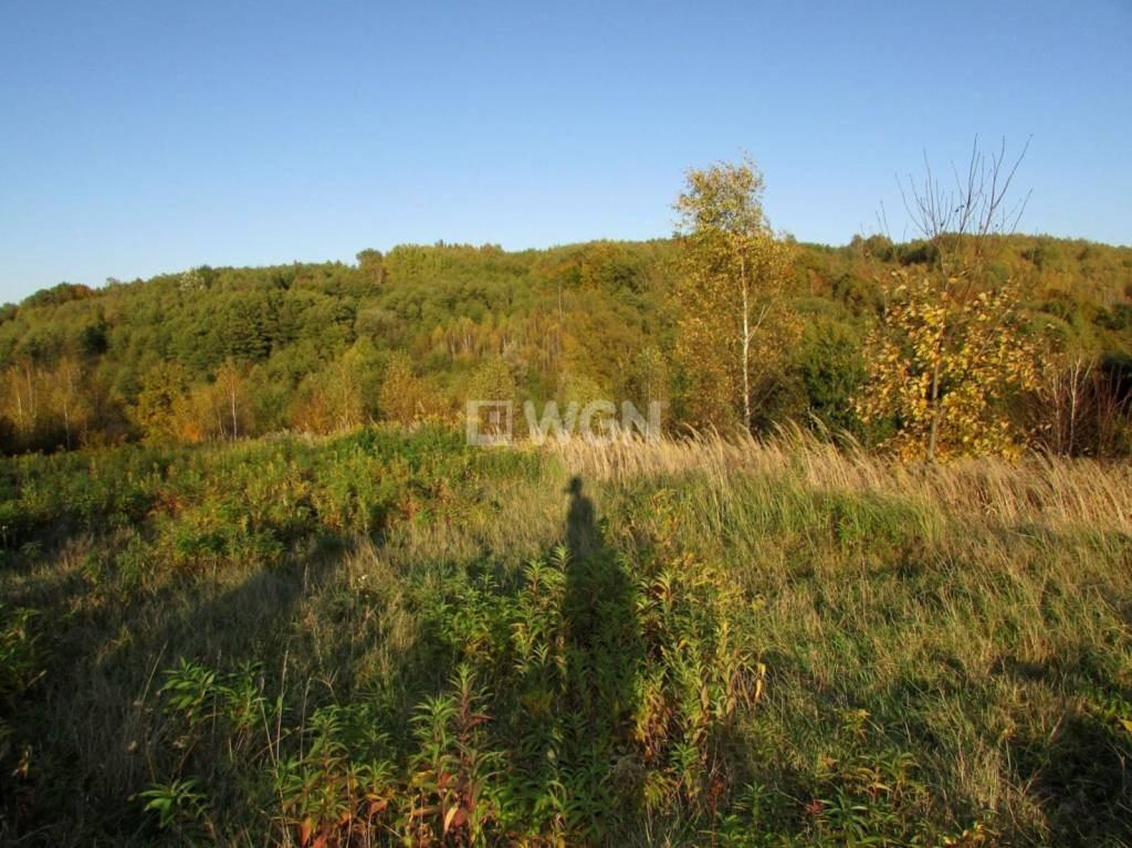 Działka rolna na sprzedaż Wola Rafałowska, Wola Rafałowska, Wola Rafałowska  5400m2 Foto 3