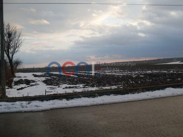 Działka rolna na sprzedaż Zakroczym, Odpadki  41000m2 Foto 1
