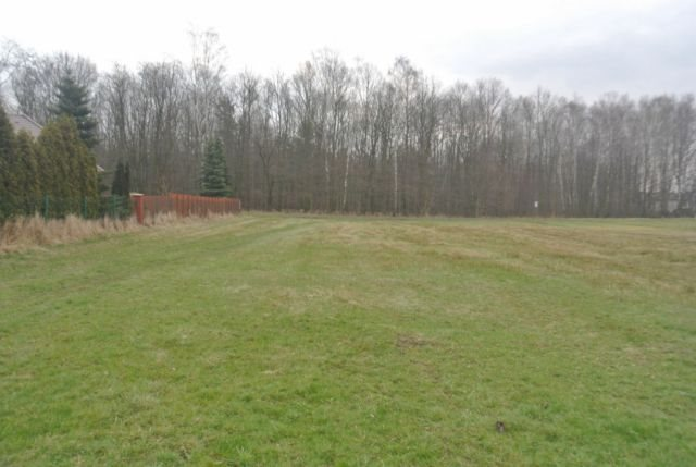 Działka budowlana na sprzedaż Mikołów, Borowa Wieś  2256m2 Foto 1
