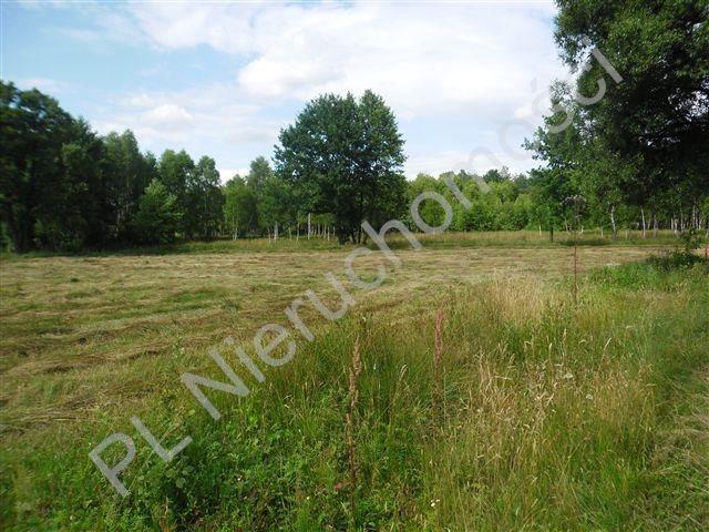 Działka rolna na sprzedaż Sokóle  5511m2 Foto 1